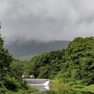 Mollem National Park: Insider-Approved Sights